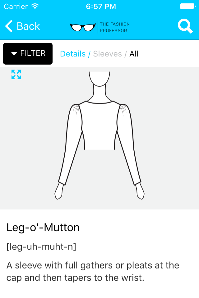 Fashion Picture Dictionary Mobile App The Fashion Professor